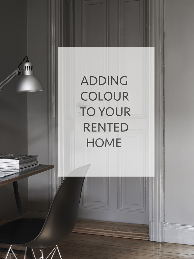 Adding colour to your rented home | post by Ollie & Sebs Haus