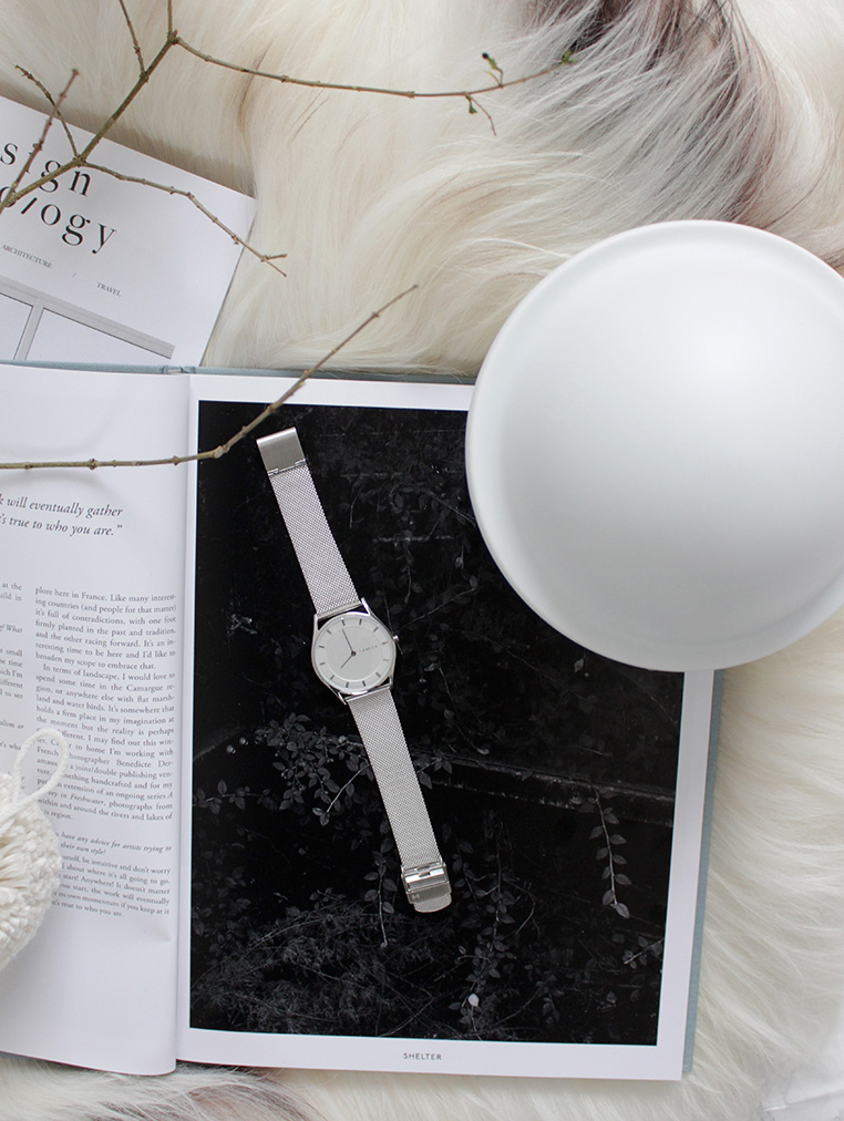 Gift Giving with Skagen via Ollie & Sebs Haus